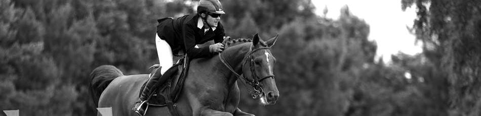 Tenues de concours - grossiste équitation