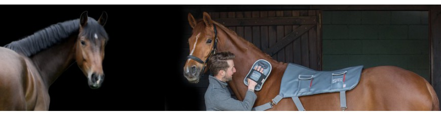 Horse & Leather Care - horse riding wholesaler