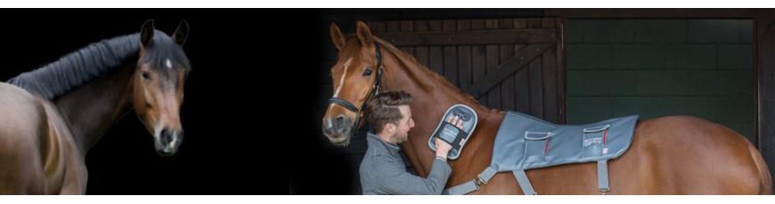 Pferde & Leder Pflege - Großhändler Reitspezialist